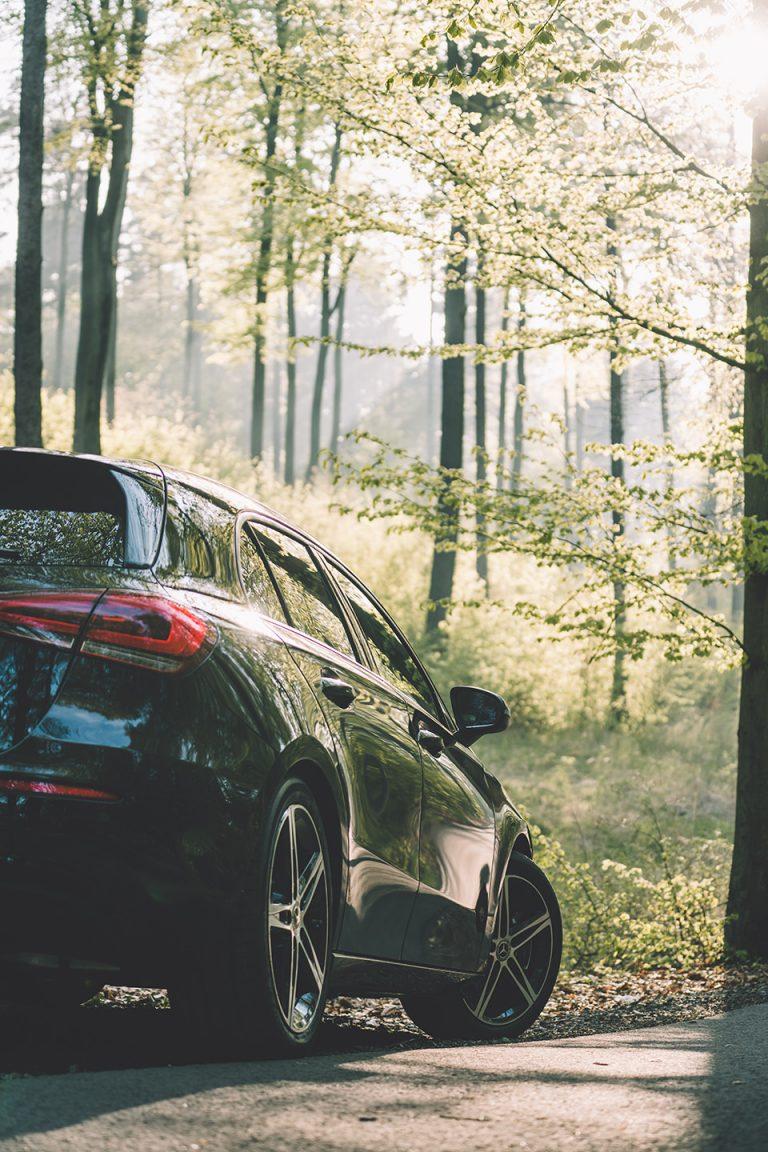 auto-beifahrerseite-heck-wald