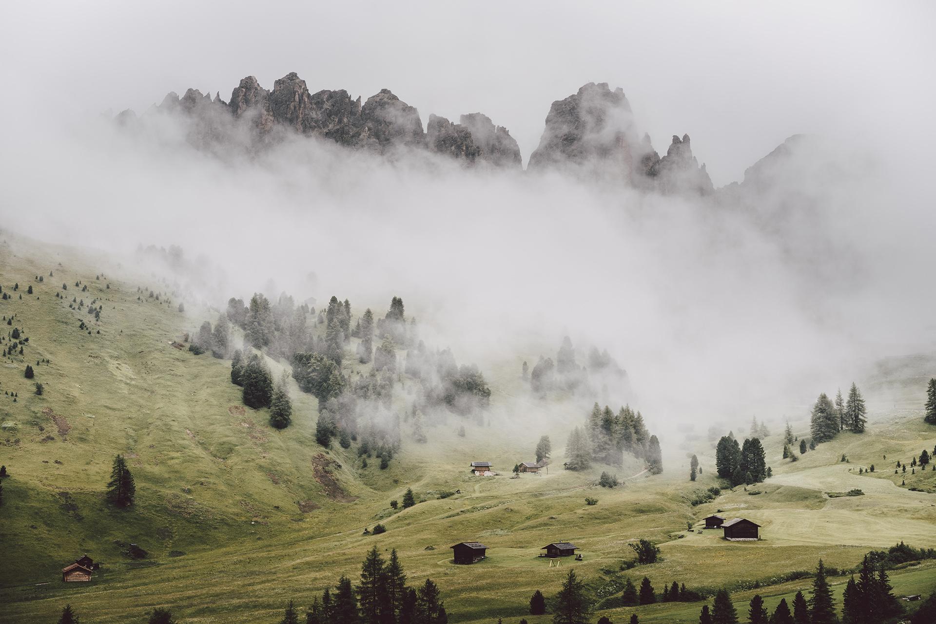 berg-nebel-wiese