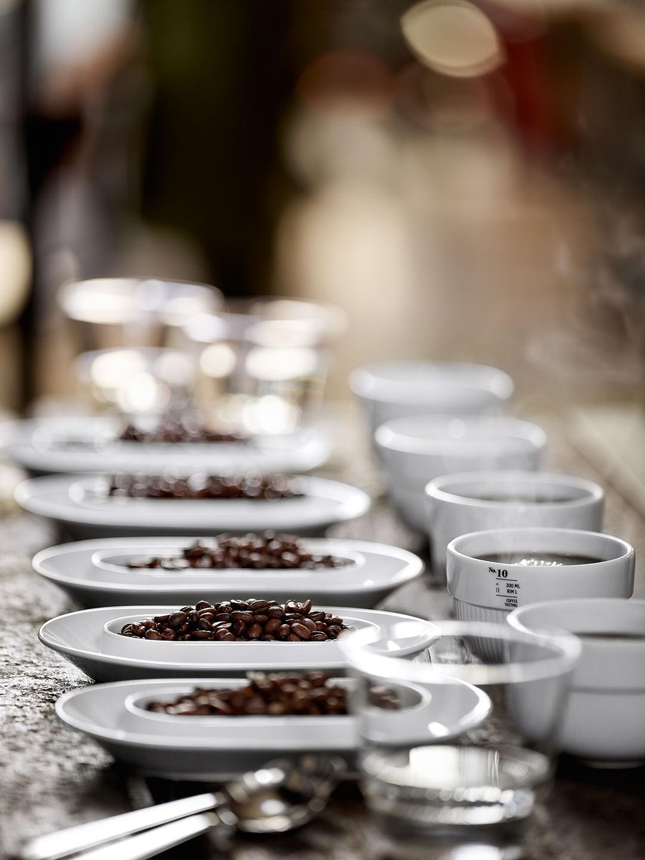 coffee-tasting-kaffee-bohne-reihe