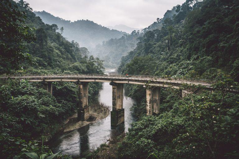 dschungel-bruecke-fluss-vietnam