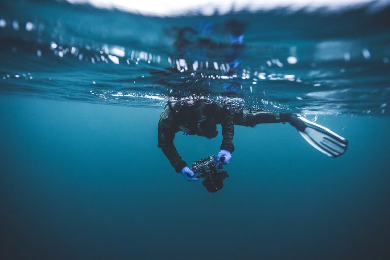unterwasser-fotograf-wasser-wale