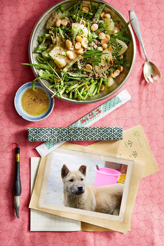 wasserspinat-salat-asiatisch-flair-hund