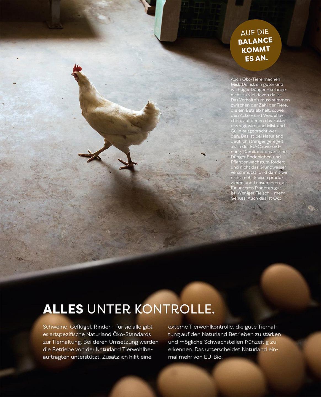 huhn-eier-landwirtschaft-naturland-kampagne