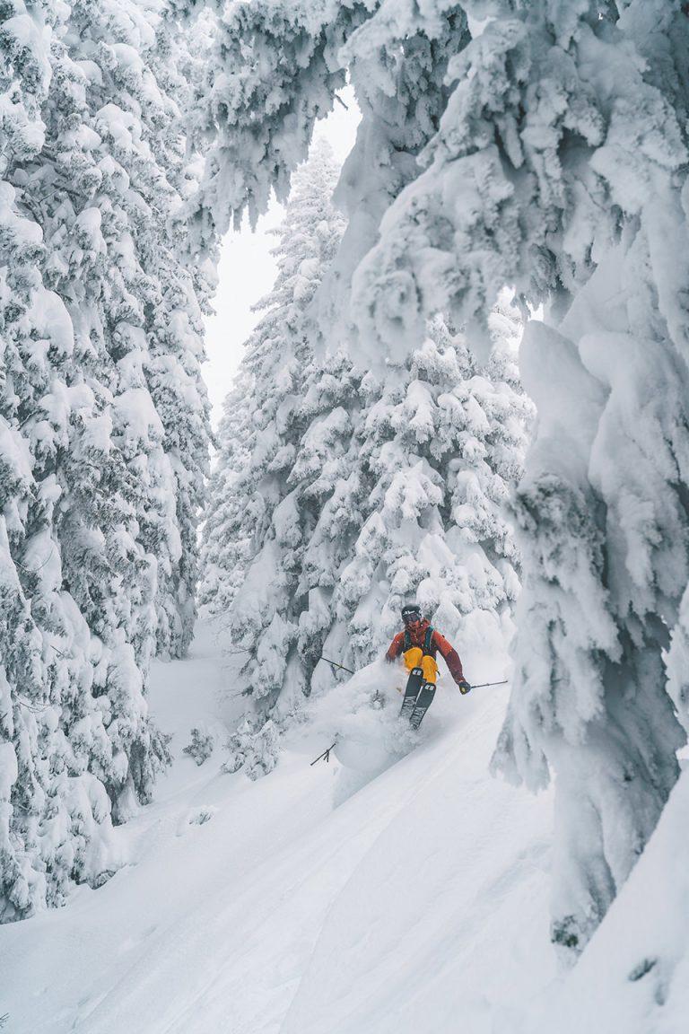 skifahren-sprung-wald-tiefschnee