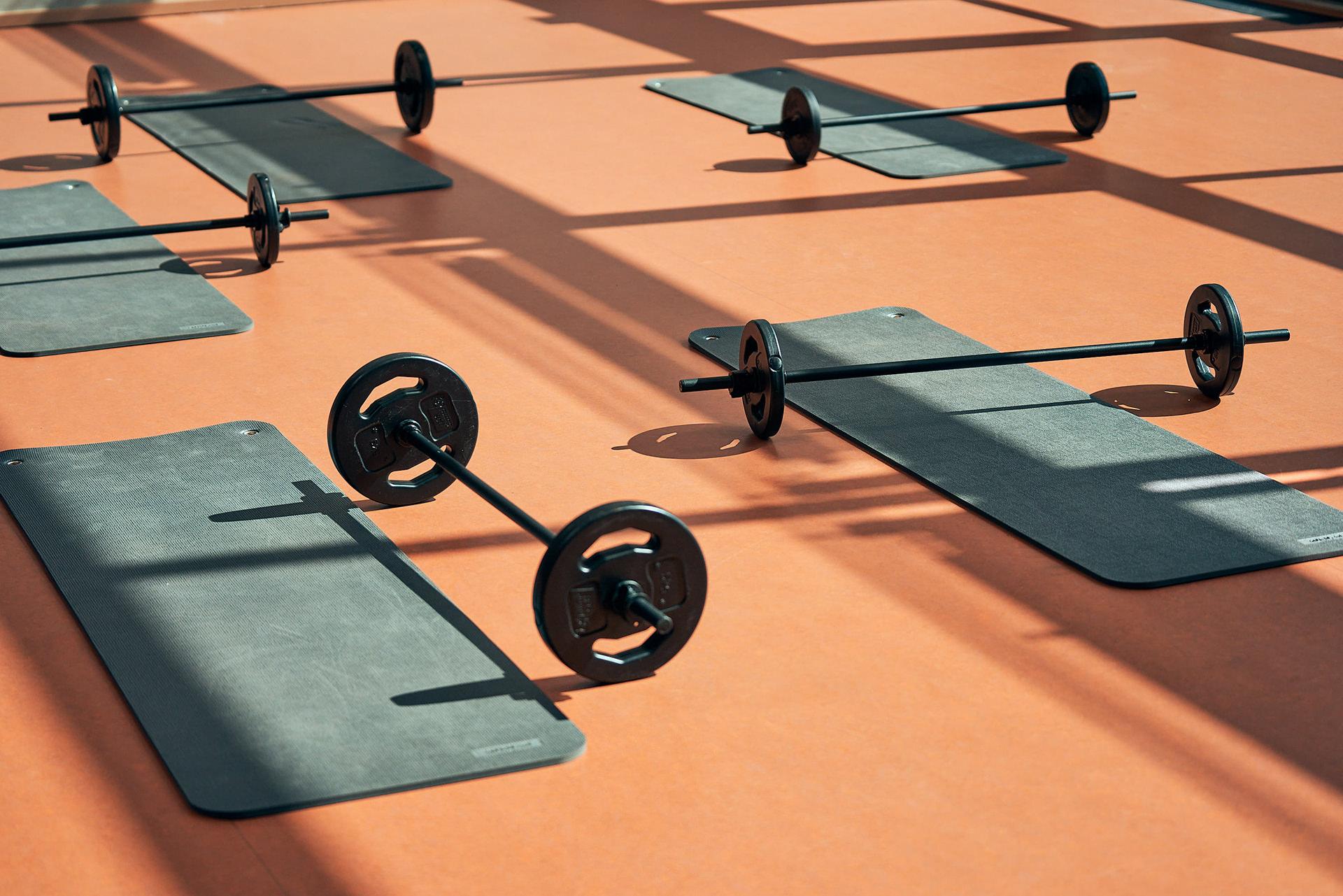 sport-equipment-matte-hantel