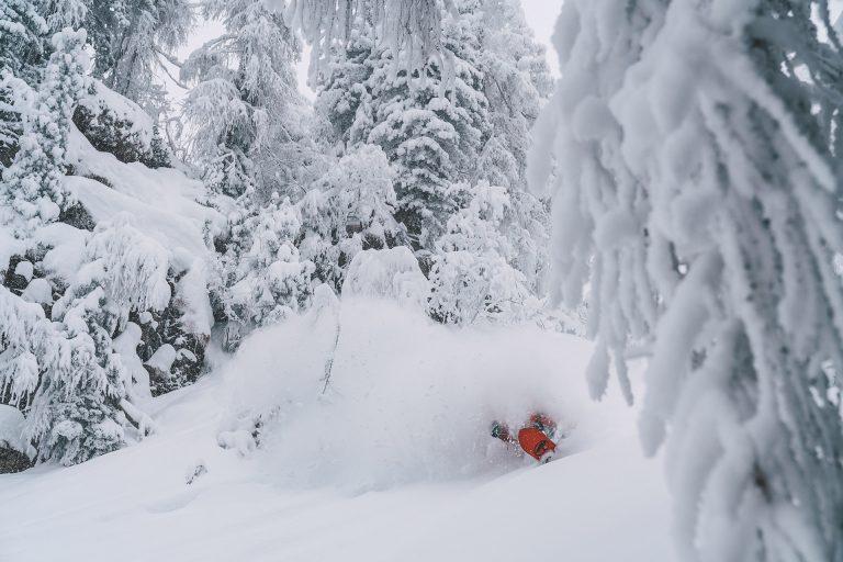 tiefschnee-weiss-snowboard-wald